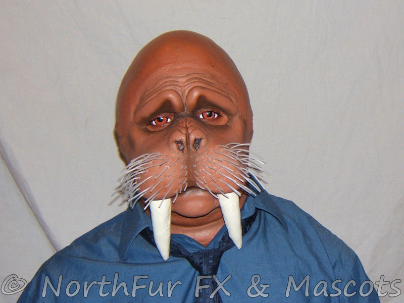 World Wide Walrus Web � Blog Archive - The Blog for Tooth Walking ...